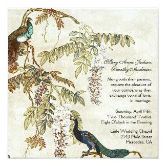 Invitación antigua del boda del pavo real de la