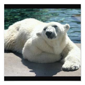 Invitación ártica del oso polar