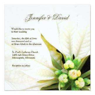 Invitación blanca del boda del Poinsettia