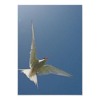 Invitación blanca del pájaro en vuelo