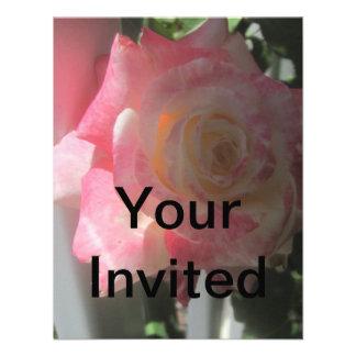 Invitación color de rosa de la colección