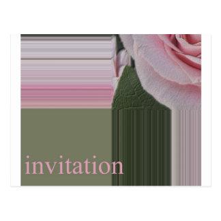 invitación compensada del rosa postal