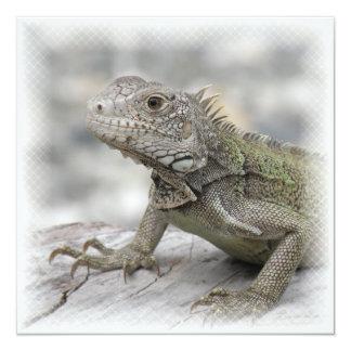 Invitación de cuernos de la iguana invitación 13,3 cm x 13,3cm