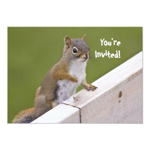 Invitación de la ardilla