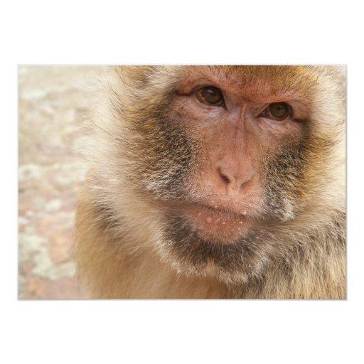 Invitación de la cara del mono