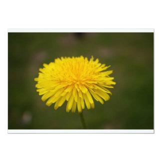 Invitación de la flor