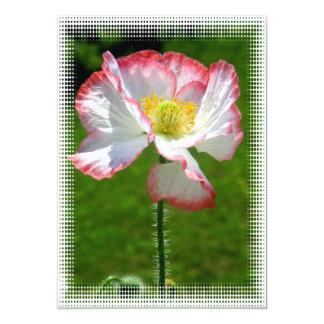 Invitación de la foto de la amapola invitación 12,7 x 17,8 cm