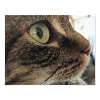 Invitación de la foto del gato del primer de Emma