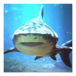 Invitación de la foto del tiburón