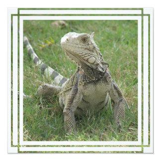 Invitación de la iguana invitación 13,3 cm x 13,3cm