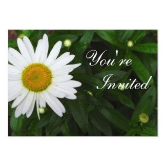Invitación de la margarita invitación 12,7 x 17,8 cm