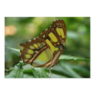 Invitación de la mariposa de la malaquita invitación 12,7 x 17,8 cm