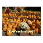 Invitación de la postal de las calabazas