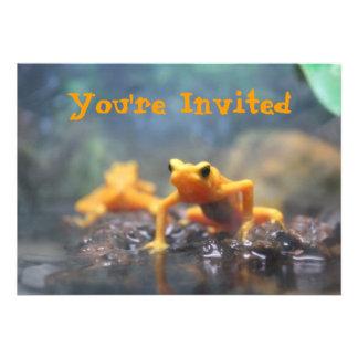 Invitación de la rana del dardo del veneno
