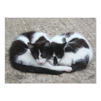 """""""Invitación de los gatos del amor"""" Invitación 4.5"""" X 6.25"""""""