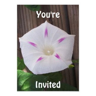 Invitación del blanco de la correhuela