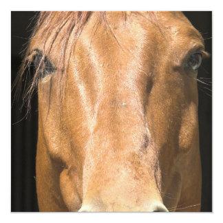 Invitación del caballo de la castaña