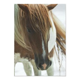 Invitación del caballo salvaje del mustango