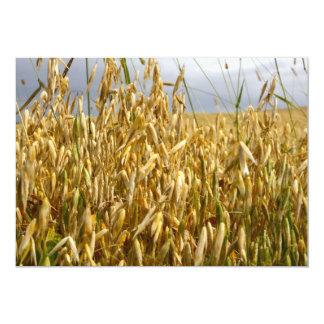 Invitación del campo de trigo