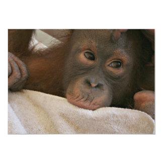 Invitación del chimpancé del bebé invitación 12,7 x 17,8 cm
