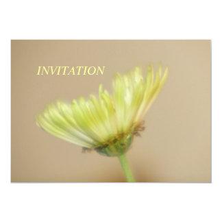 INVITACIÓN del crisantemo