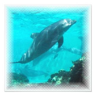 Invitación del delfín de la natación