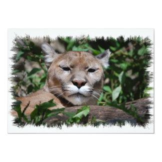 Invitación del depredador del puma
