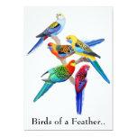 Invitación del fiesta de los loros del Birds of a