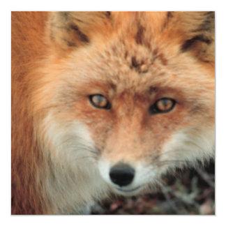 Invitación del Fox rojo Invitación 13,3 Cm X 13,3cm