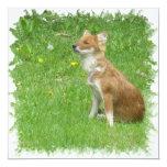 Invitación del Fox rojo