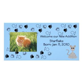 Invitación del gatito - azul tarjetas fotográficas personalizadas