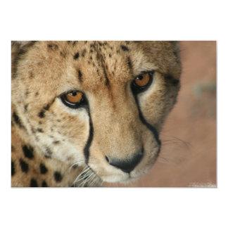 Invitación del gato del guepardo
