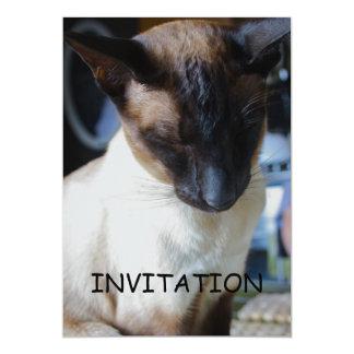 Invitación del gato siamés invitación 12,7 x 17,8 cm