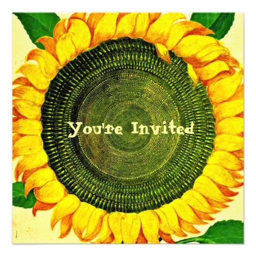 Invitación del girasol del vintage