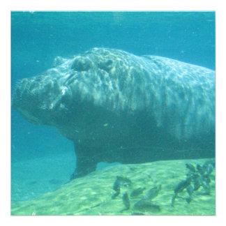 Invitación del Hippopotamus