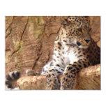 Invitación del leopardo invitación 10,8 x 13,9 cm