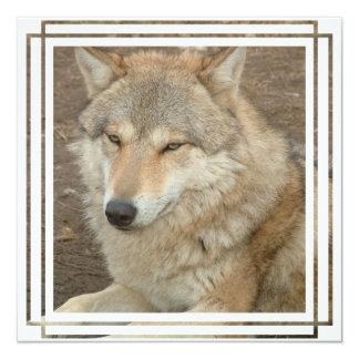 Invitación del lobo