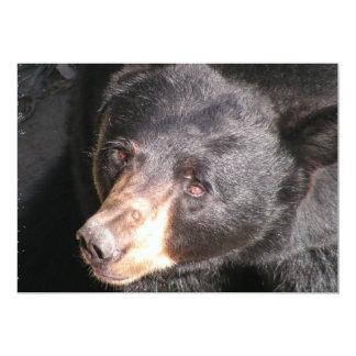 Invitación del oso negro invitación 12,7 x 17,8 cm