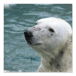 Invitación del perfil del oso polar invitación 13,3 cm x 13,3cm