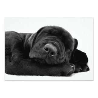 Invitación del perrito del laboratorio el dormir