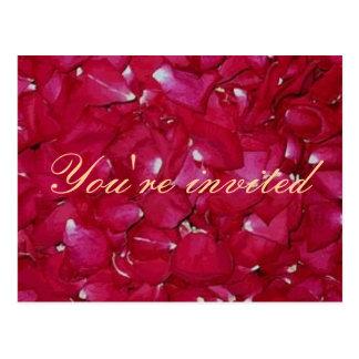 invitación del pétalo color de rosa tarjetas postales