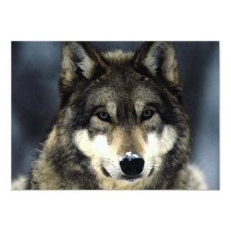 Invitación del retrato del lobo