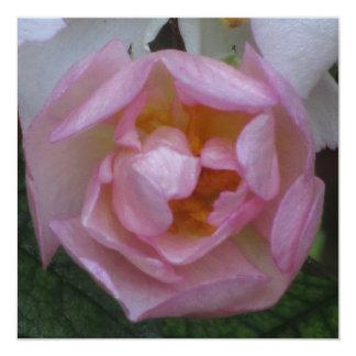 Invitación - Fiesta Cumpleaños - La Rosa Rosa Card