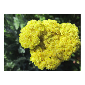 Invitación - flor amarilla - multiusos invitación 16,5 x 22,2 cm