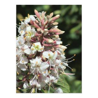 Invitación - flor blanca invitación 16,5 x 22,2 cm