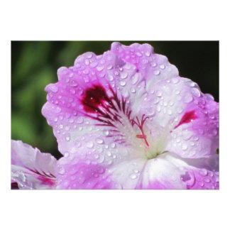Invitación - flor rosada