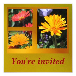 Invitación - flores de la margarita - tarjeta