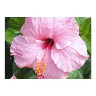 Invitación hermosa de la flor del hibisco