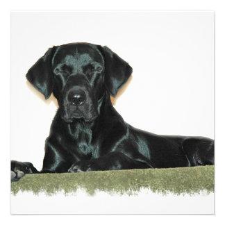 Invitación negra del perrito del laboratorio