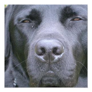 Invitación negra del perro del labrador retriever